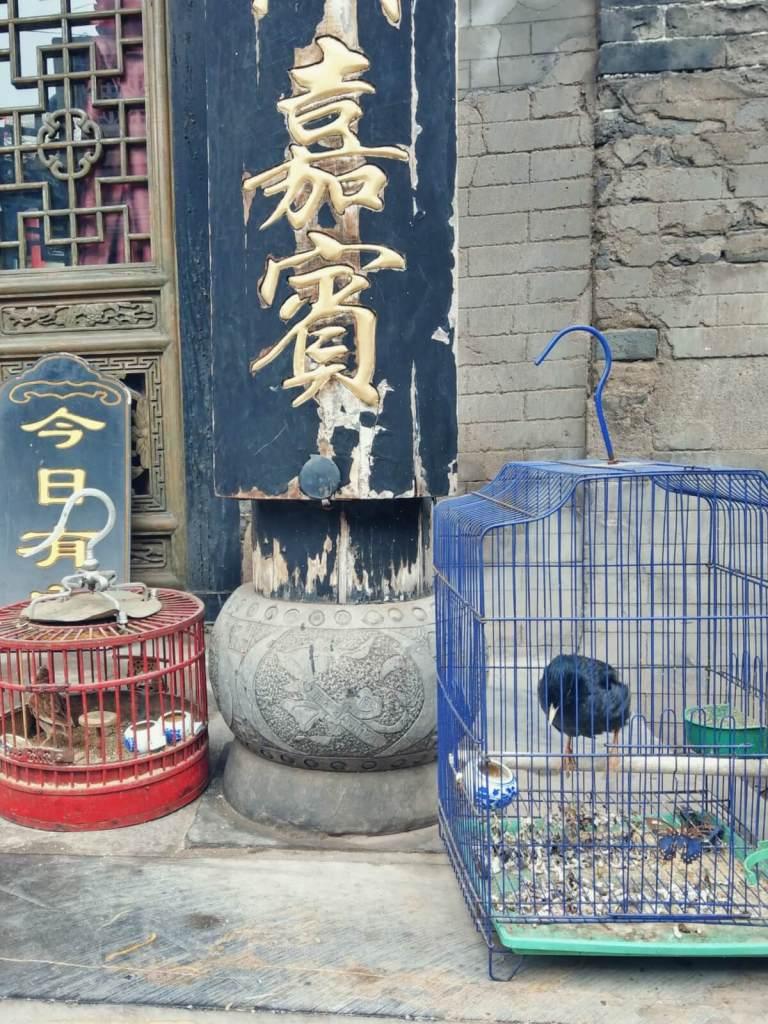Starożytne miasto Pingyao w Chinach.