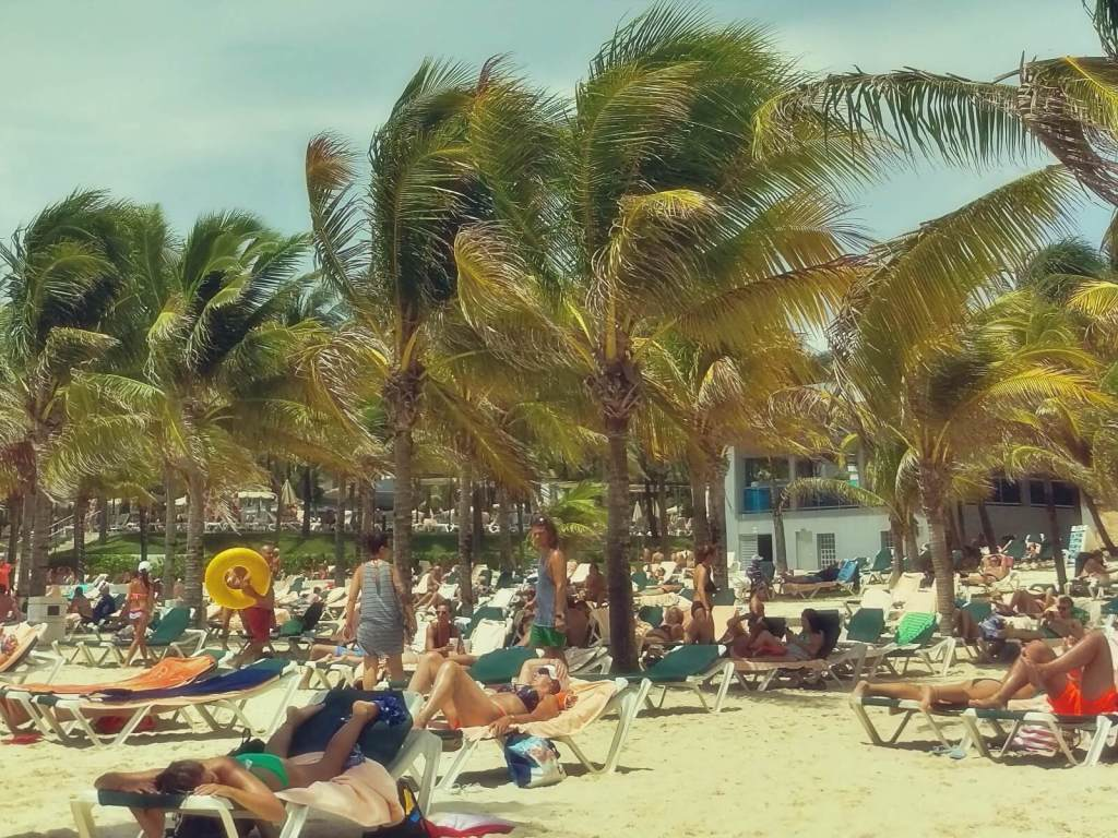 Palmy na plaży w Meksyku.
