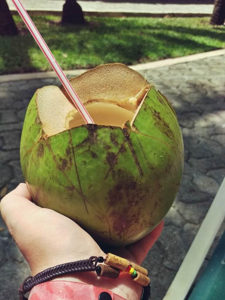 W Meksyku pijemy wodę z orzechów kokosowych.
