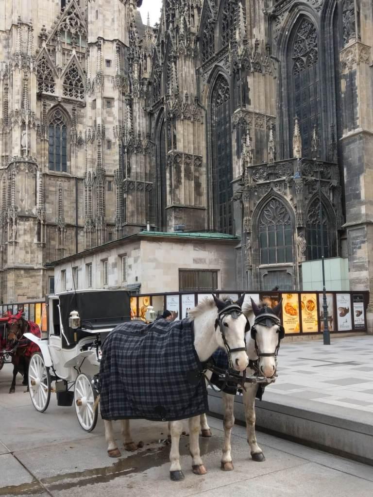 Bryczki czekające na turystów pod katedrą św. Szczepana w Wiedniu, w Austrii.