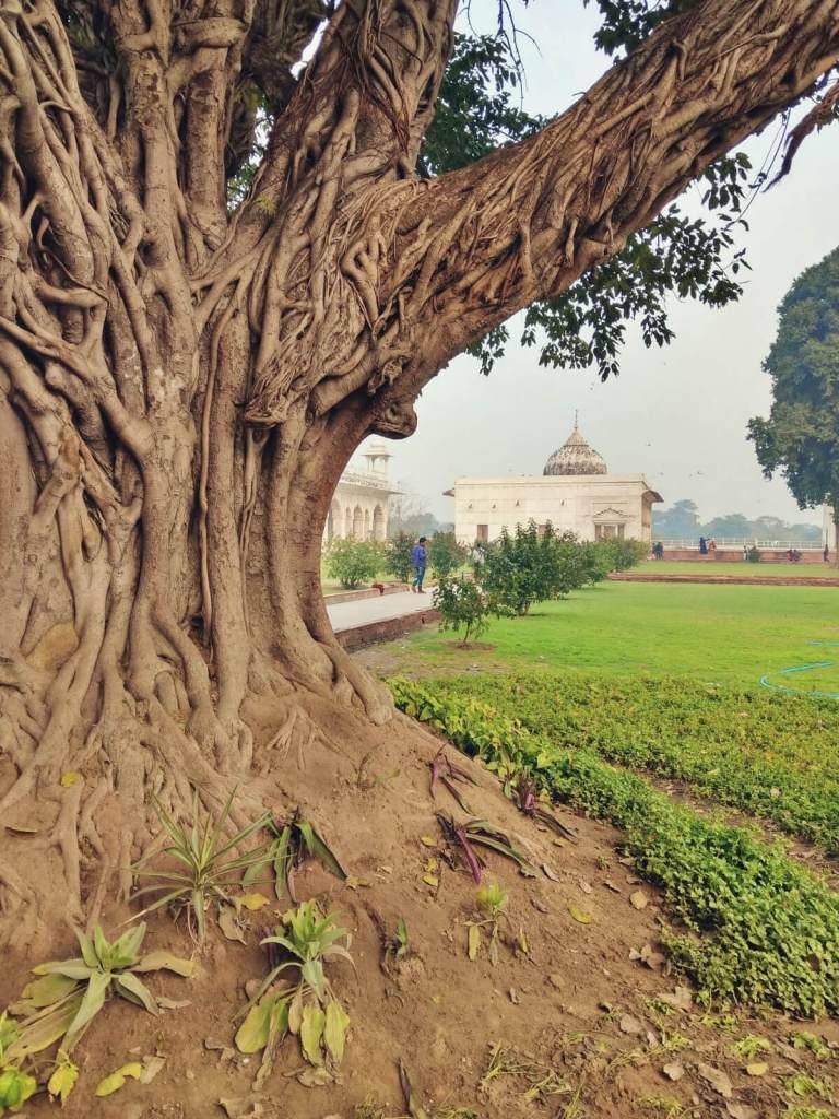 Czerwony Fort w Delhi.