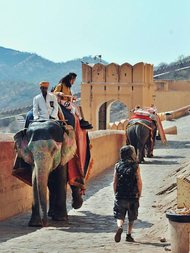 Turyści na słoniach wjeżdżają do Amber fortu.