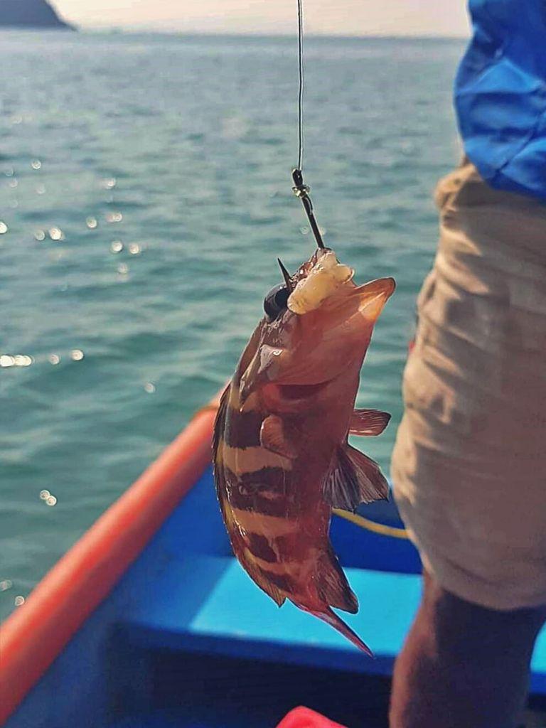 Łowienie ryb na Morzu Arabskim.