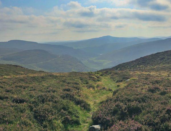 Park Narodowy Gór Wicklow w Irlandii.