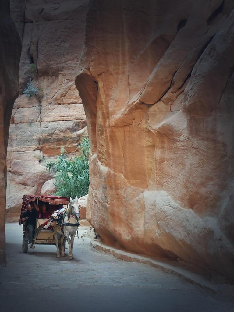 Zaprzęgi konne zabierają turystów do skalnego miasta Petry.