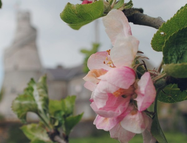 Wonderful Barn, tajemnicza wieża z Irlandii.